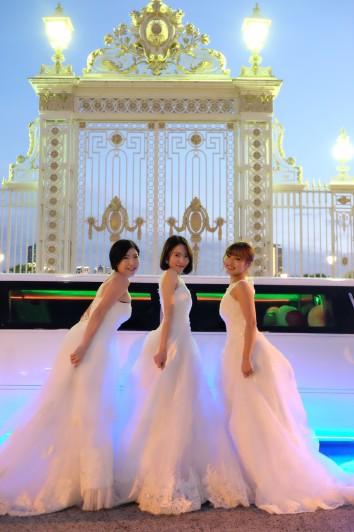 メイン撮影はウエディングドレスにピッタリの背景!  赤坂迎賓館門前撮影